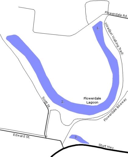 Map of Flowerdale Lagoon